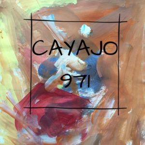 Photo-logo-CAYAJO.971